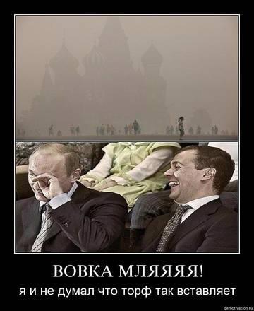 http://sg.uploads.ru/t/Ap0Qu.jpg