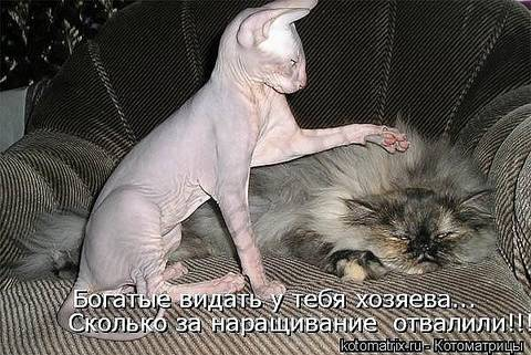 http://sg.uploads.ru/t/B5ADR.jpg