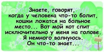 http://sg.uploads.ru/t/B7WR3.jpg