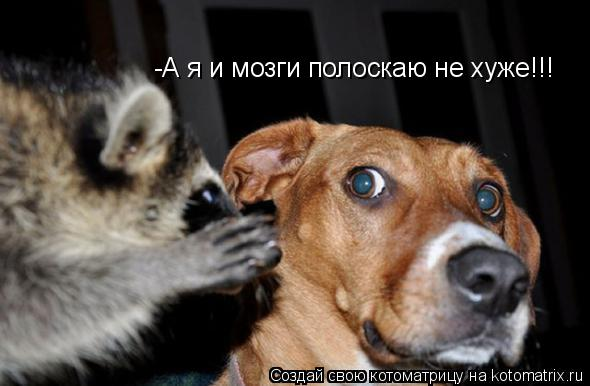 http://sg.uploads.ru/t/BFRhp.jpg