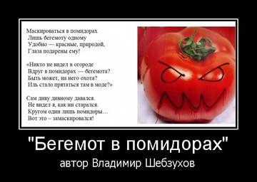 http://sg.uploads.ru/t/BOhym.jpg