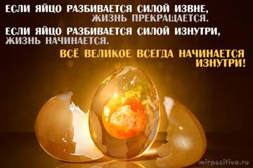 http://sg.uploads.ru/t/BREwy.jpg