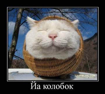 http://sg.uploads.ru/t/BV8K2.jpg
