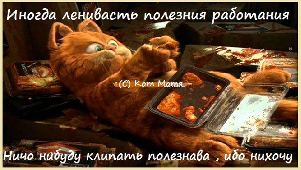 http://sg.uploads.ru/t/Bcdm2.jpg