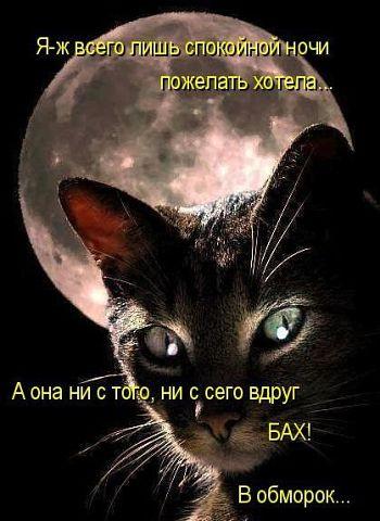 http://sg.uploads.ru/t/CDHxb.jpg