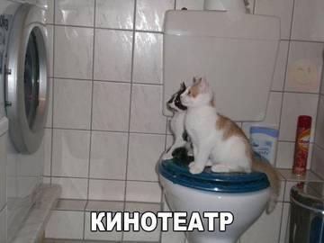 http://sg.uploads.ru/t/CXfdh.jpg