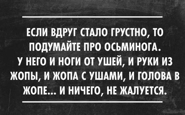 http://sg.uploads.ru/t/CcRgP.jpg