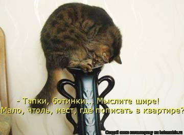 http://sg.uploads.ru/t/ClgzJ.jpg