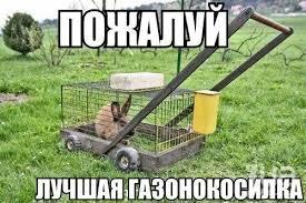 http://sg.uploads.ru/t/D4IAn.jpg