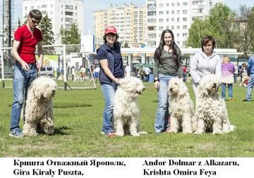 http://sg.uploads.ru/t/DGjwt.jpg