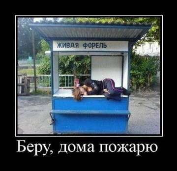 http://sg.uploads.ru/t/DiNT3.jpg