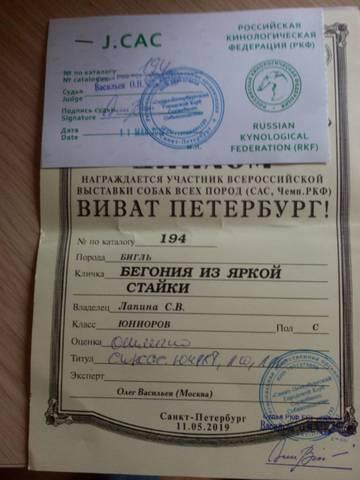 http://sg.uploads.ru/t/E2oni.jpg