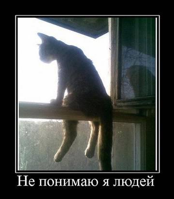 http://sg.uploads.ru/t/E72dM.jpg