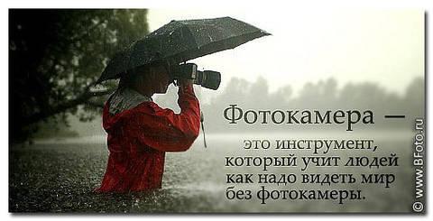 http://sg.uploads.ru/t/EVzNA.jpg