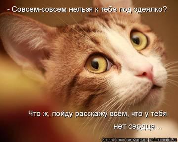 http://sg.uploads.ru/t/EmYpC.jpg