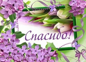 http://sg.uploads.ru/t/Ez7pa.jpg