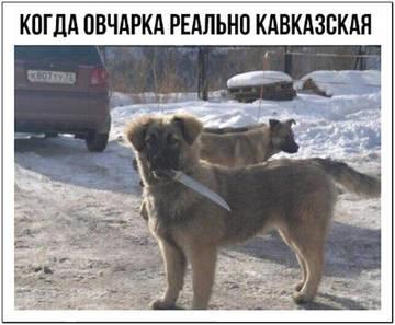 http://sg.uploads.ru/t/FBuak.jpg
