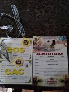 http://sg.uploads.ru/t/FHOpP.jpg