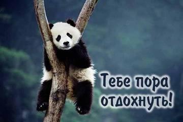 http://sg.uploads.ru/t/FIZJB.jpg