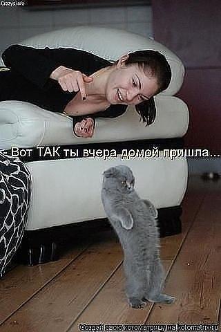 http://sg.uploads.ru/t/FIgzb.jpg