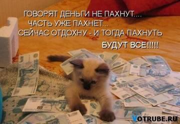 http://sg.uploads.ru/t/FIjW0.jpg