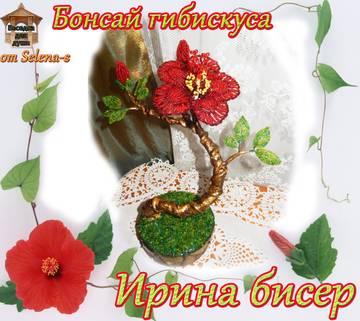 http://sg.uploads.ru/t/FLzT8.jpg