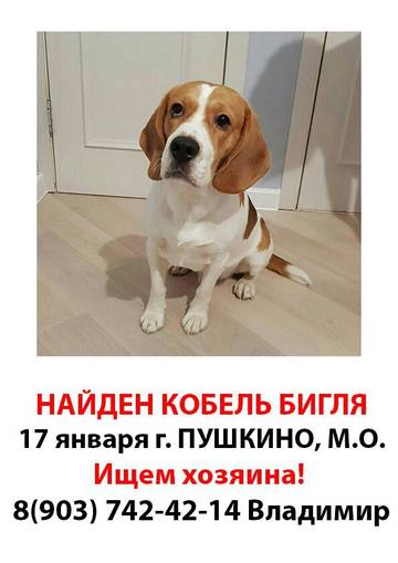 http://sg.uploads.ru/t/FMh7m.jpg