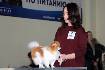 http://sg.uploads.ru/t/FR7mM.jpg