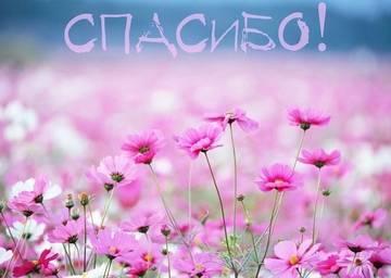 http://sg.uploads.ru/t/FSONe.jpg