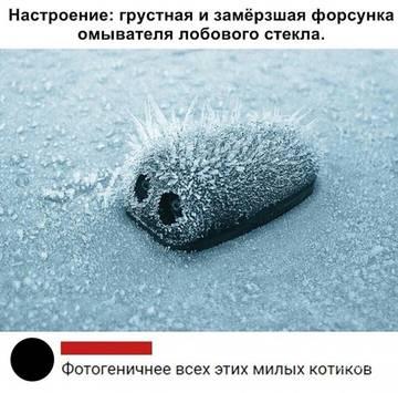 http://sg.uploads.ru/t/FUvPr.jpg