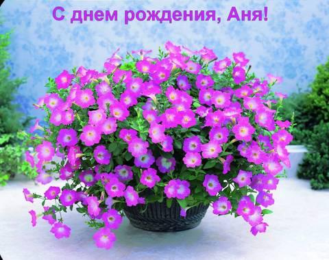 http://sg.uploads.ru/t/FpKvD.jpg