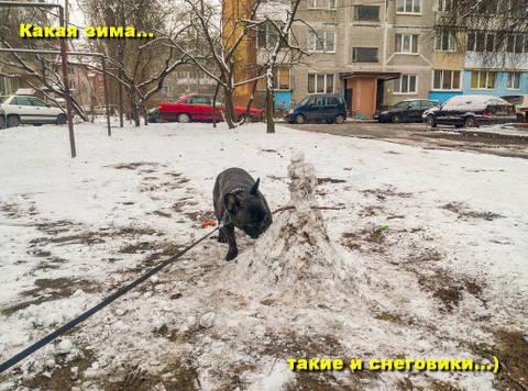 http://sg.uploads.ru/t/GJHR5.jpg