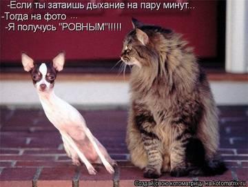 http://sg.uploads.ru/t/GMvYB.jpg