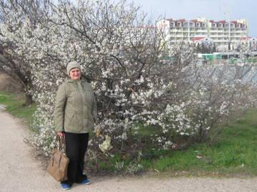 http://sg.uploads.ru/t/GcNm6.jpg