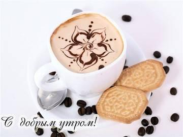 http://sg.uploads.ru/t/Gcr6d.jpg