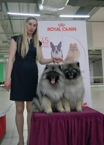 http://sg.uploads.ru/t/HE2Yp.jpg