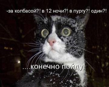 http://sg.uploads.ru/t/HQ56A.jpg