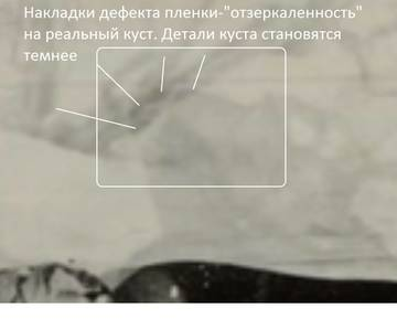 http://sg.uploads.ru/t/HZwUm.jpg