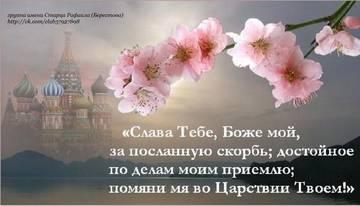 http://sg.uploads.ru/t/HelyO.jpg