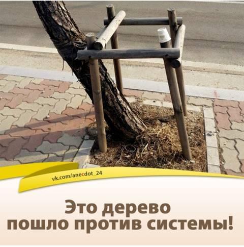 http://sg.uploads.ru/t/HqR64.jpg