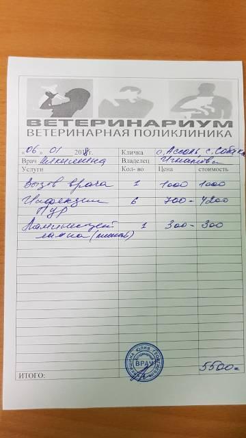 http://sg.uploads.ru/t/IE8SY.jpg