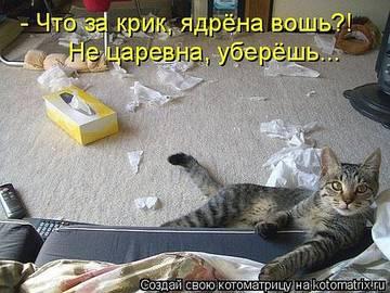 http://sg.uploads.ru/t/IYHlJ.jpg