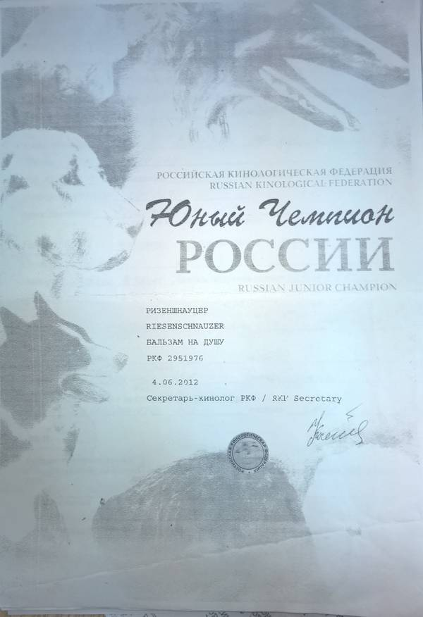 http://sg.uploads.ru/t/IrGjB.jpg