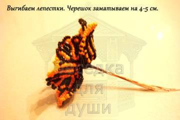 http://sg.uploads.ru/t/Jih8C.jpg