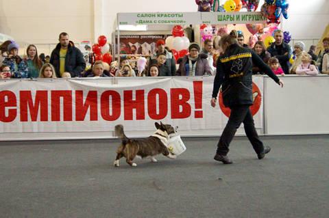 http://sg.uploads.ru/t/Ju8Vp.jpg