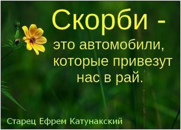 http://sg.uploads.ru/t/Jucgz.jpg