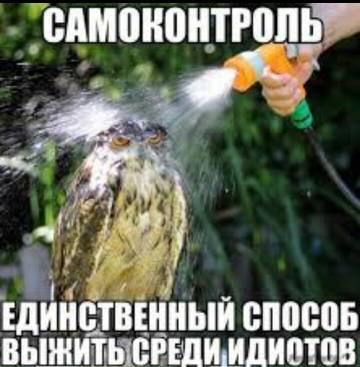 http://sg.uploads.ru/t/K7LaB.jpg