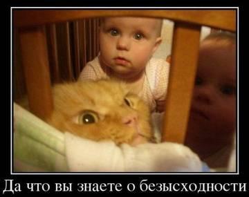 http://sg.uploads.ru/t/KSd8s.jpg