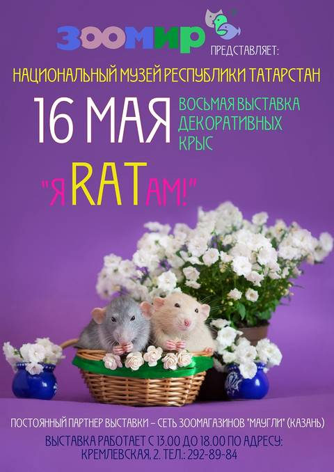 http://sg.uploads.ru/t/KZEWx.jpg