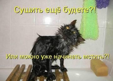 http://sg.uploads.ru/t/Ki6zM.jpg